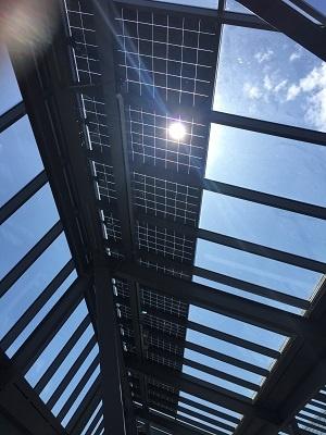 Polycrystalline solar glass